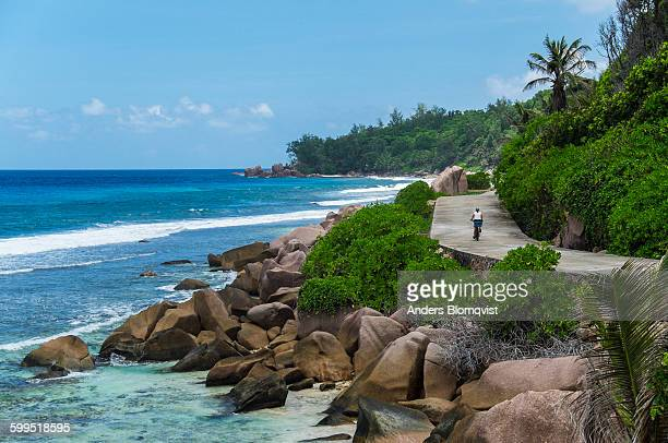 woman bicycling on tropical coast road - la digue island stock pictures, royalty-free photos & images