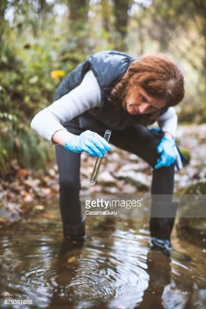 biologische forscherin wasserprobe betrachten - wissenschaftlerin stock-fotos und bilder