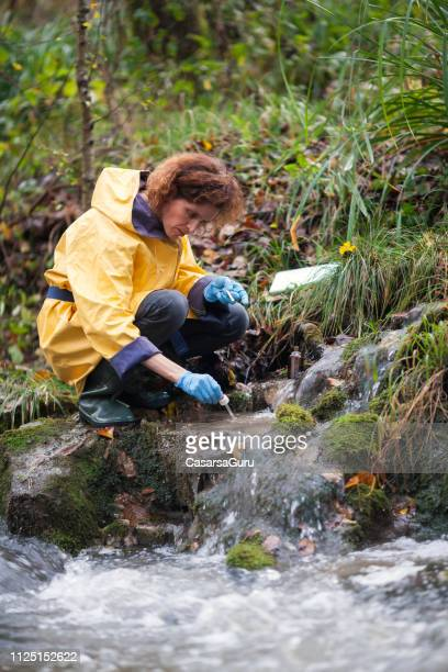 woman biologists checking water purity - biologo foto e immagini stock