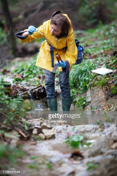 woman biologists examining water of the forest stream - environmentalist stock pictures, royalty-free photos & images