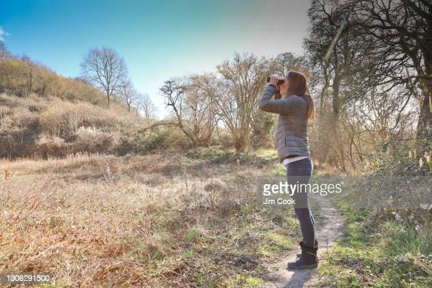 woman birdwatching - nature reserve stock pictures, royalty-free photos & images
