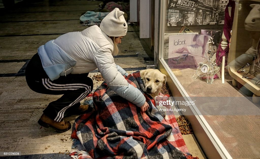 A woman blankets a dog to keep it warm at the entrance of a shopping center in Bakirkoy district of Istanbul, Turkey on January 8, 2017. Citizens feed animals and lay blankets on the floor to warm them up during inclement weather conditions.