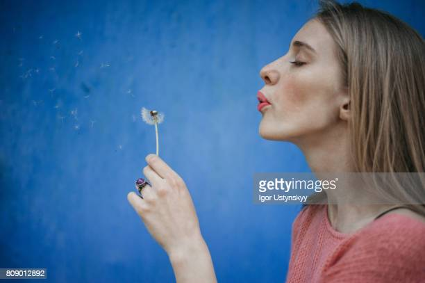 woman blowing dandelion on the background of blue wall - soplar fotografías e imágenes de stock