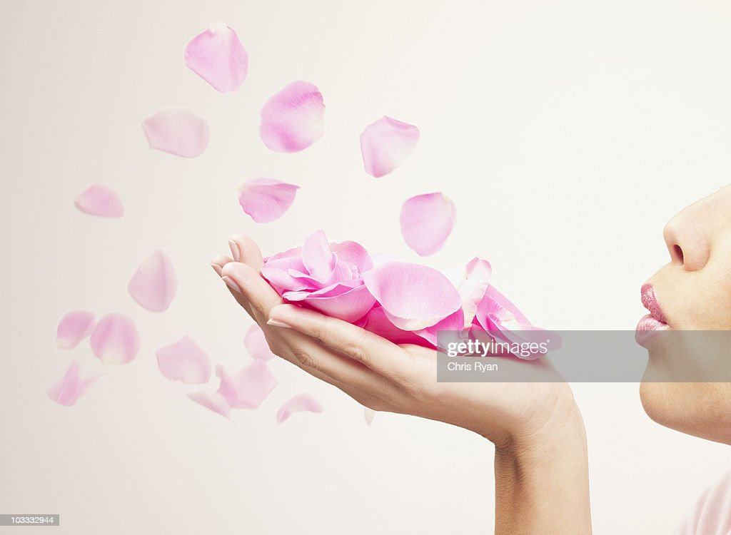 Woman blowing pink rose petals : Stock Photo