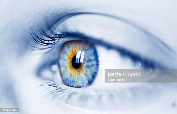 Frau Blaue Auge