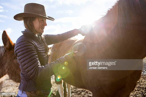 A woman brushes her horse.
