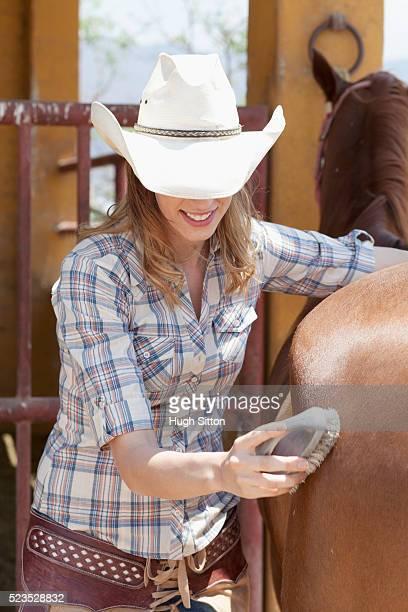 woman brushing horse's hair - hugh sitton photos et images de collection