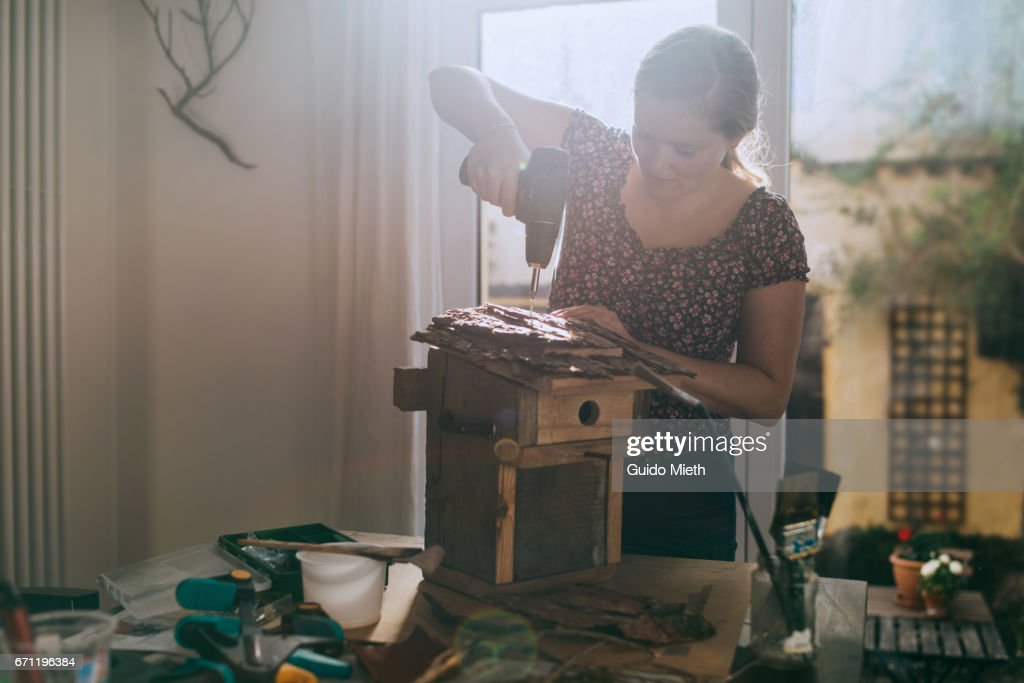 Woman building a bird house. : Stock-Foto