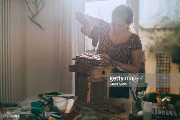 woman building a bird house. - birdhouse stock pictures, royalty-free photos & images