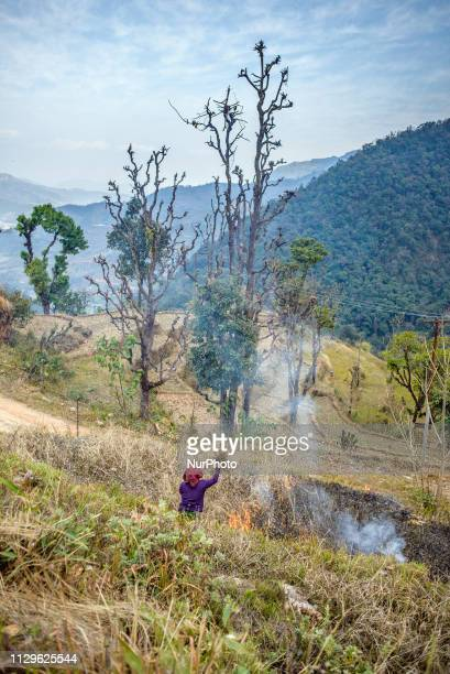 A woman burns grass in a mountain settlement near Pokhara Nepal in March 2019