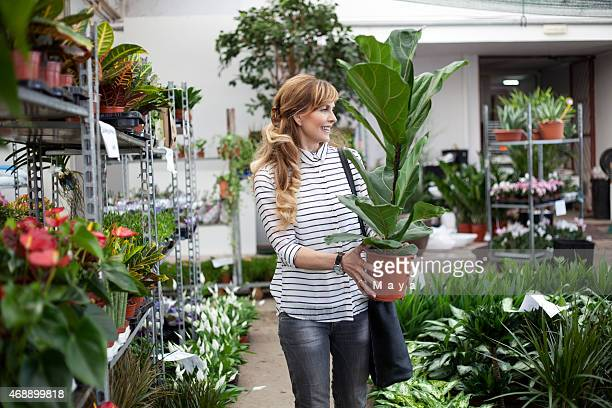 woman buying at garden store - garden center stock pictures, royalty-free photos & images