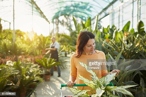 Woman buying plants in a garden center.