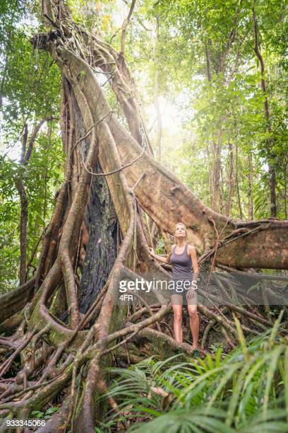 Woman by a huge tree, Mossman Gorge, Daintree National Park, Queensland, Australia