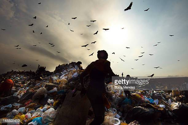 A woman carries a bag with rubbish as birds fly on the sky at Jardim Gramacho the biggest open air garbage dump in Latin American on its closing day...