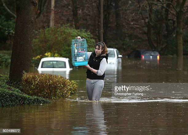 A woman carries a birdcage as she wades through floodwater after the River Calder burst its bank's in the Calder Valley town of Mytholmroyd on...