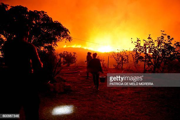 A woman carries a bucket of water as a wildfire threatens her house at Monchique Algarve southern of Portugal on September 9 2016 Portugal's Algarve...