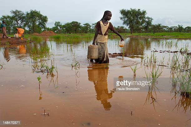 Woman carries a heavy jug of water through a muddy pond July 17, 2012 in Jamam refugee camp, South Sudan. Many refugees choose to gather the muddy...