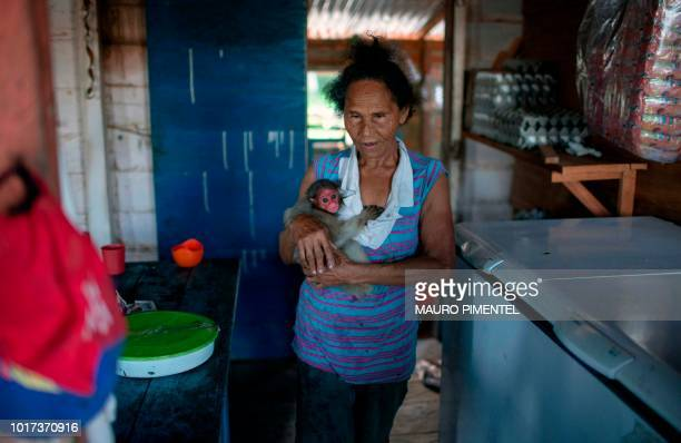 A woman carries a Red Uakari monkey cub inside her home at Sao Francisco do Cubua villagein the Mamiraua Sustainable Development Reserve in the state...