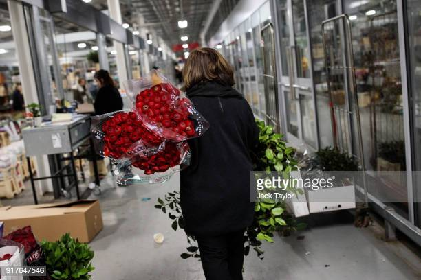 A woman carries bunches of roses through New Covent Garden Flower Market ahead of Valentine's Day on February 13 2018 in London England New Covent...