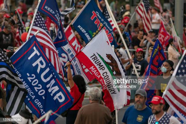 Woman carries flag based on the state flag of California as US President Donald Trump supporters rally on Halloween during the last weekend before...