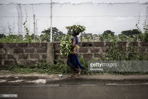 A woman carries freshly picked vegetables on her head as she walks down the street in Kinshasa Democratic Republic of the Congo on Friday Jan 11 2019...