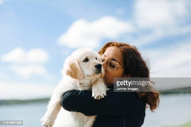 woman carry puppy - golden retriever photos et images de collection