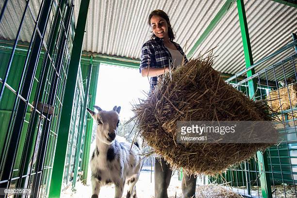 Woman carrying a bale of hay on a farm