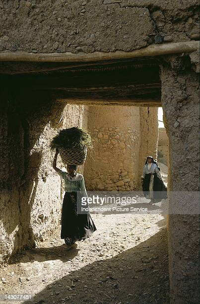 A woman carrying a basket on her head in Zagora Morocco The basket contains green harvested plants