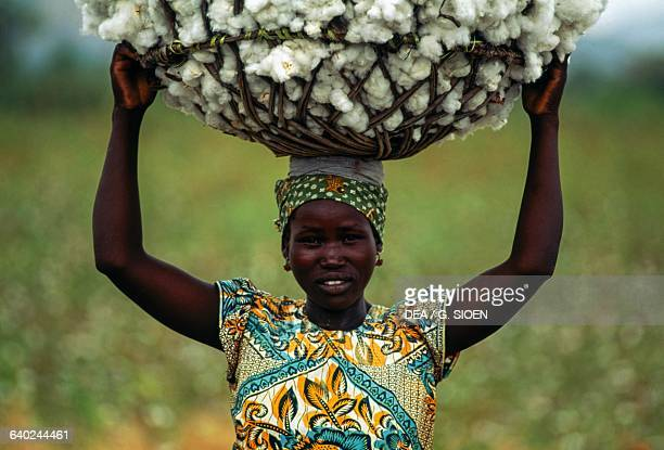A woman carrying a cotton basket on her head Rey Bouba Cameroon