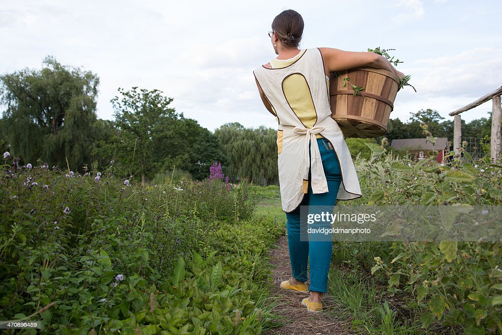 Woman carrying basket of plants on family herb farm : Stock Photo