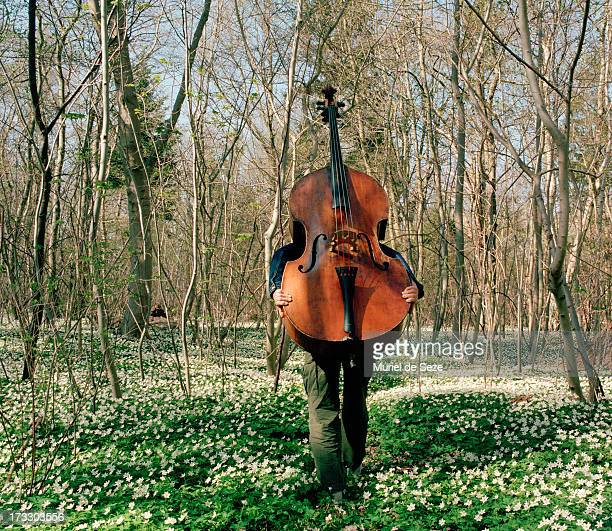 woman carrying cello through wood - cello stock pictures, royalty-free photos & images