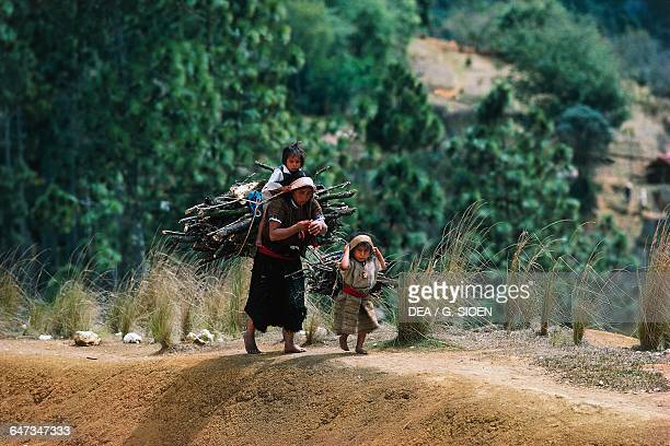 Woman carrying firewood with a child on her shoulders San Cristobal de las Casas Chiapas Mexico