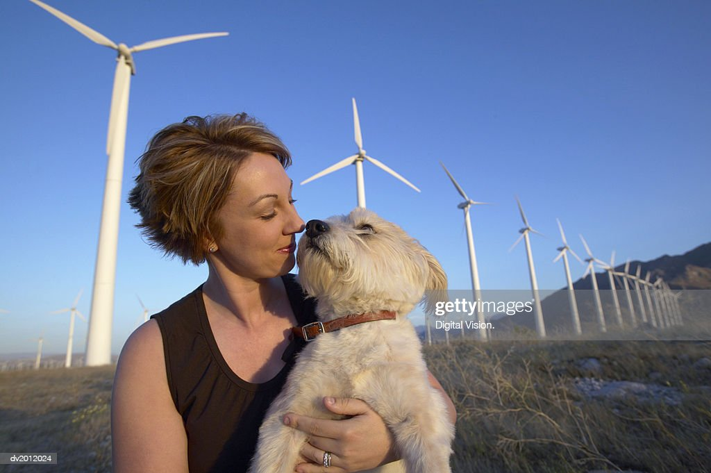 Woman Carrying Her Terrier in Front of a Line of Wind Turbines : Stock Photo