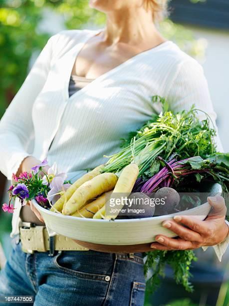 woman carrying vegetables - wortel knolgewas stockfoto's en -beelden