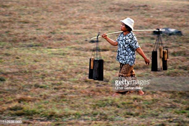 woman carrying water - khmer stock pictures, royalty-free photos & images