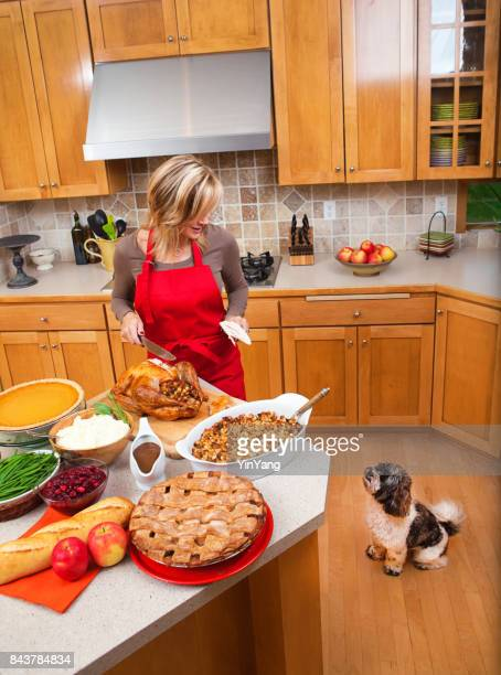woman carving roast turkey preparing thanksgiving and christmas dinner - thanksgiving dog stock photos and pictures