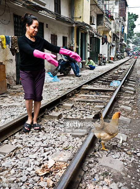 Woman chases one of her escaped chickens along the urban railway that runs through Hanoi, Vietnam, 2013