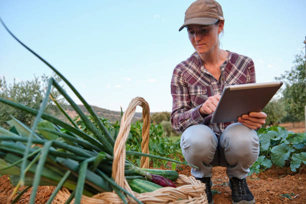 Woman checking order with the digital tablet