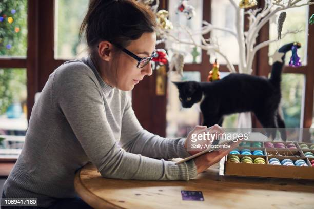 woman christmas shopping online - pet equipment stock pictures, royalty-free photos & images
