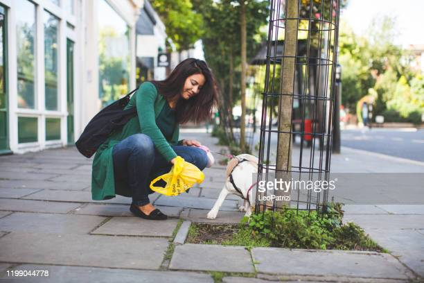 woman cleaning up the sidewalk in london, notting hill - cacca foto e immagini stock