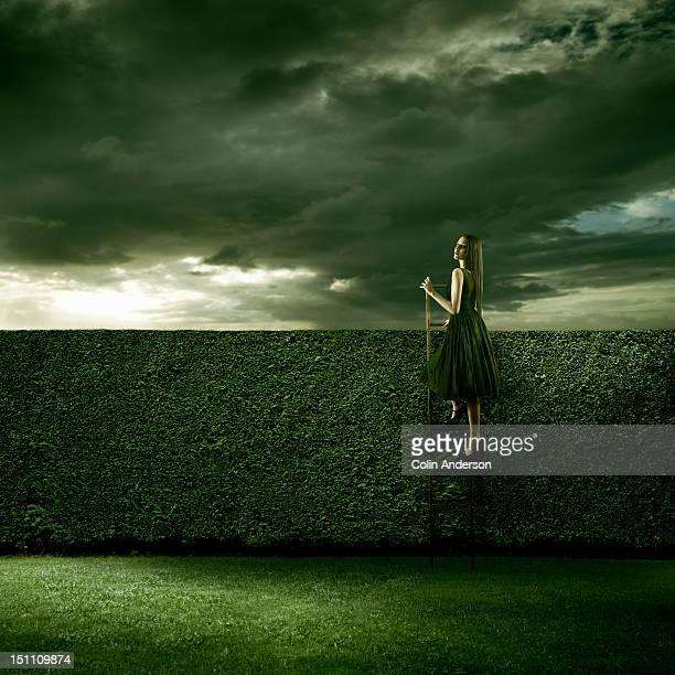 A woman climbing a ladder over a hedge