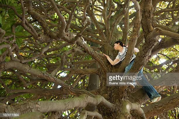 Woman climbing Magnolia tree