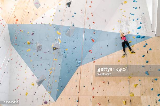 woman climbing on the wall in climbing gym - クライミングウォール ストックフォトと画像