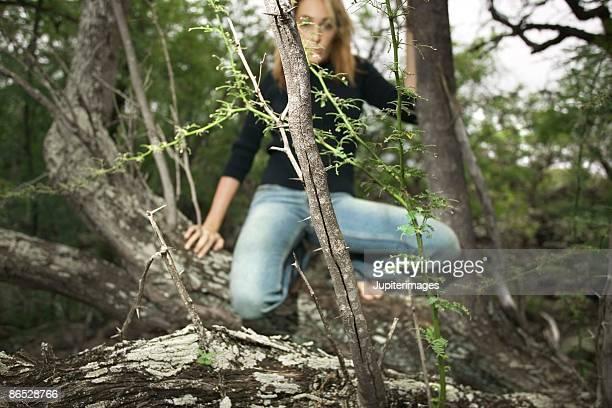 Woman climbing tree branches