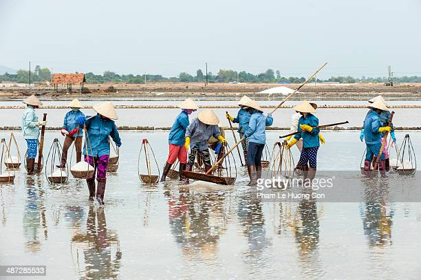 woman collect salt on the farm - south vietnam stock pictures, royalty-free photos & images