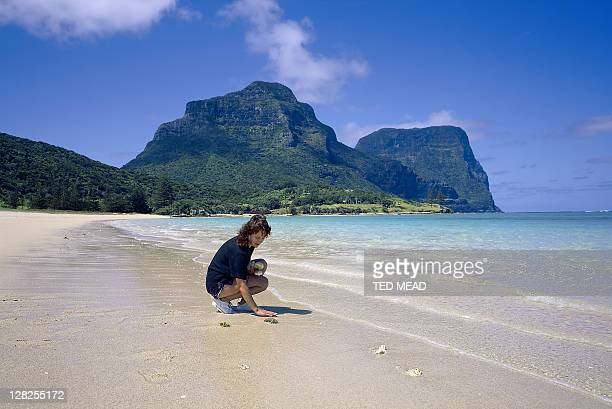 woman collecting shells,mt lidgbird & gower in background,lord howe island,new south wales
