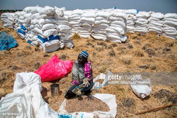 TOPSHOT A woman collects grains left on the ground after a food distribution on March 4 in Ganyiel Panyijiar county in South Sudan South Sudan was...