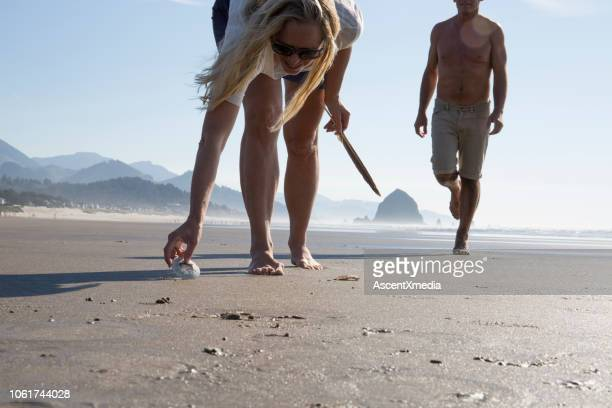 woman collects shells on empty beach, amn approaches - oregon coast stock pictures, royalty-free photos & images