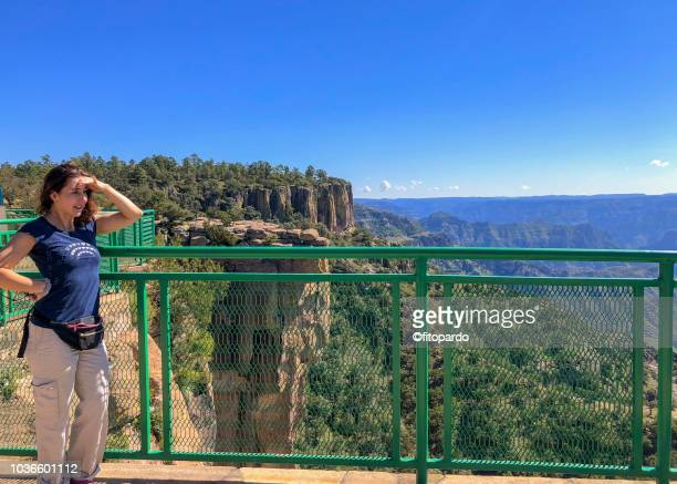 woman contemplating the copper canyon - tarahumara fotografías e imágenes de stock