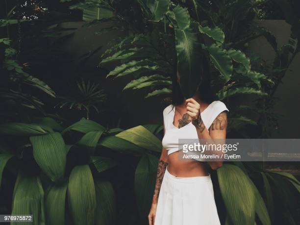 woman covering face with leaf against plants - green dress stock pictures, royalty-free photos & images